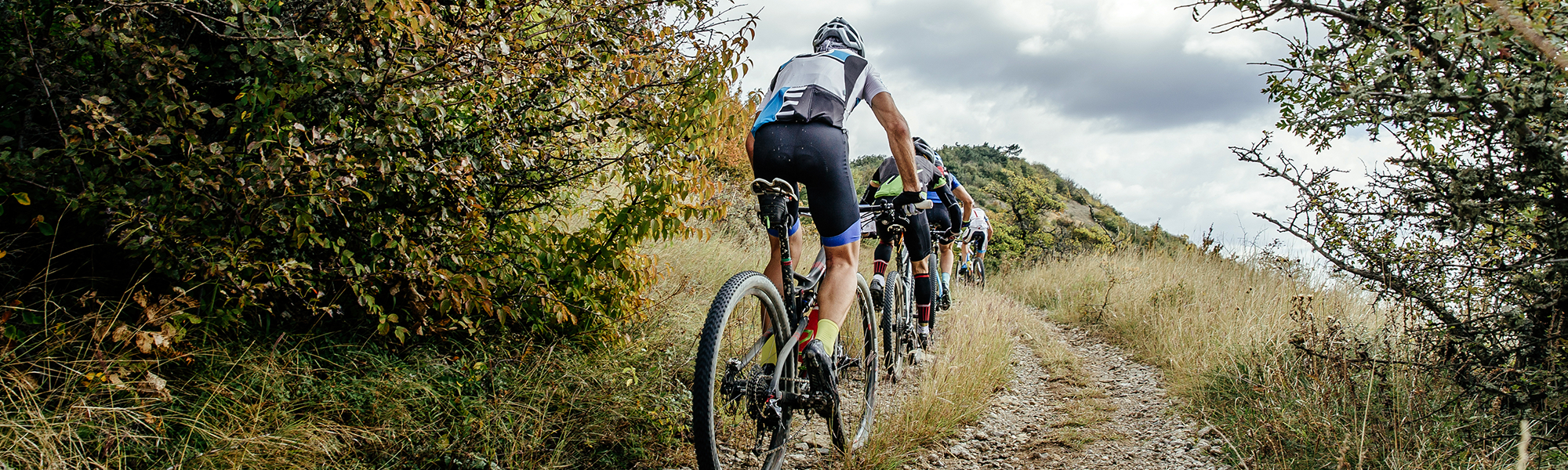 Line of Mountain Bikers Ascending a Trail
